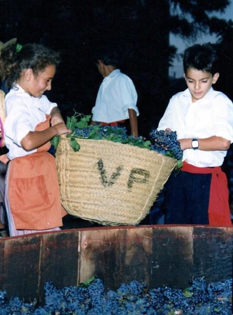 MUR_5_5_1_galeria_antigua_14-474x640-www.fiestadelavendimia.com_1.jpg